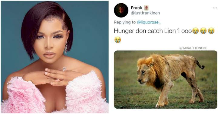 """BBNaija: """"Hunger don catch lion ooo"""" - Reactions as official fan base name for Liquorose is unveiled"""