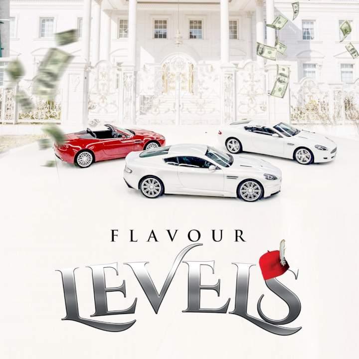 Flavour - Levels